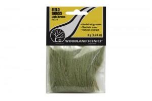 Svetlo zelená poľná tráva (Field Grass Light Green) - FG173