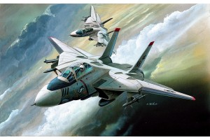 F-14 (1:144) - 12608