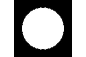 4696AP - Gloss White 20ml - akryl
